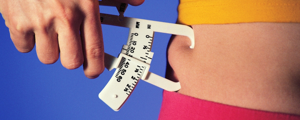 weight loss ups and downs body fat