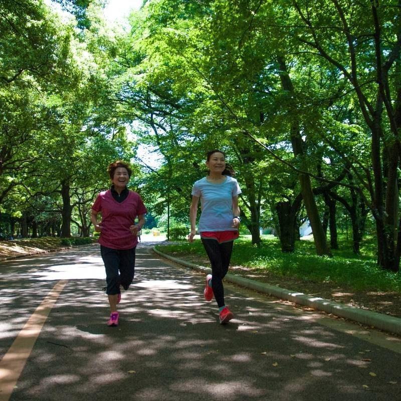 GO WALK TO RUN for the Very Beginner